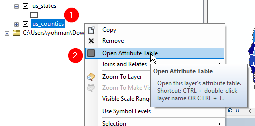 open attribute table